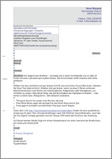 din5008_kopfbogen_b_privat - Bewerbung Zeilenabstnde